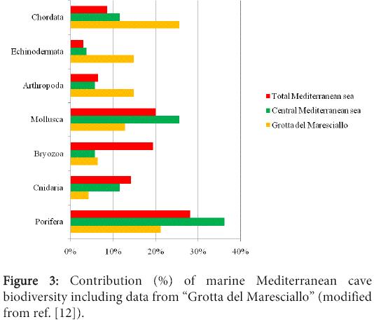 biodiversity-endangered-species-Contribution-marine-Mediterranean