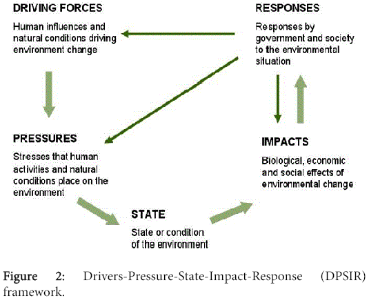 biodiversity-endangered-species-Drivers-Pressure-State-Impact