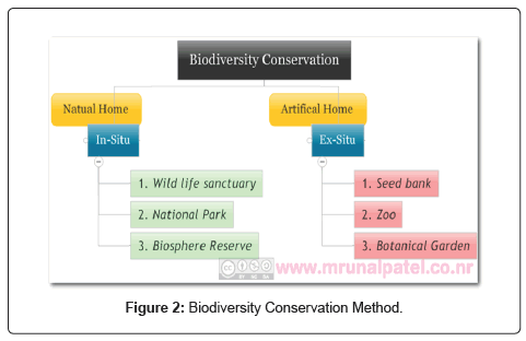 Biodiversity Conservation Needs and Method to Conserve the