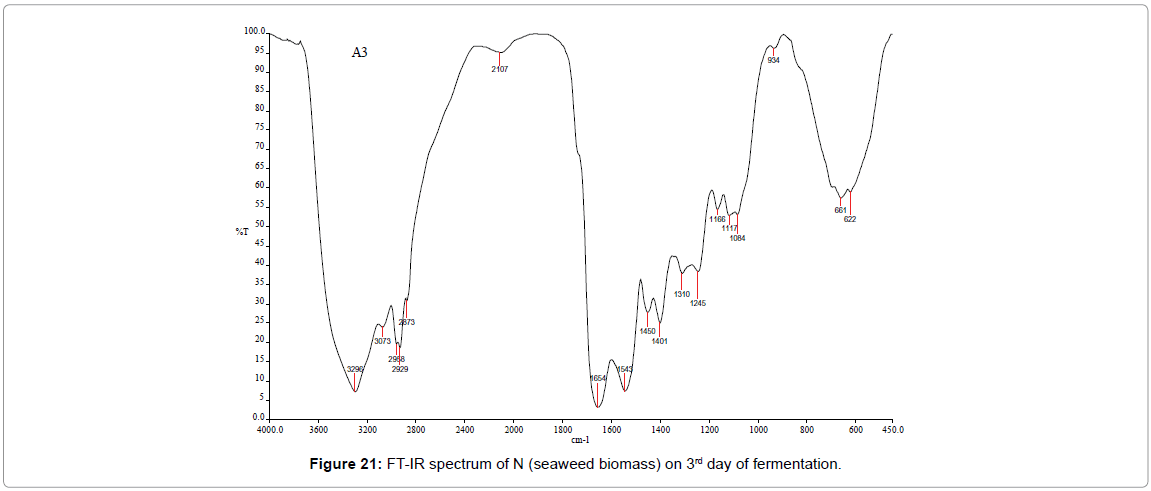 bioenergetics-FT-IR-spectrum