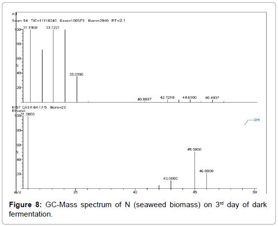 bioenergetics-GC-Mass-spectrum