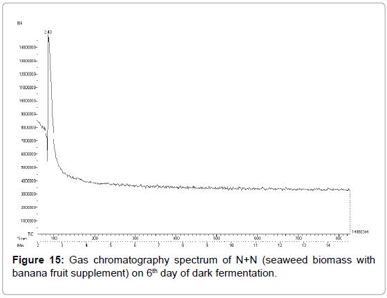 bioenergetics-Gas-chromatography