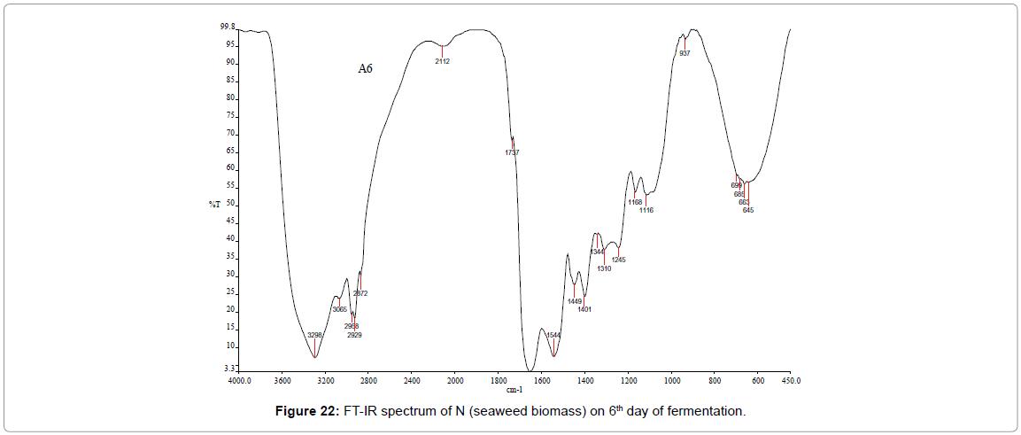 bioenergetics-IR-spectrum
