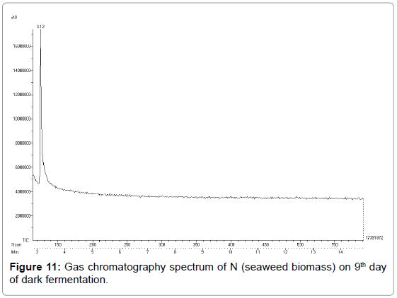 bioenergetics-chromatography-spectrum