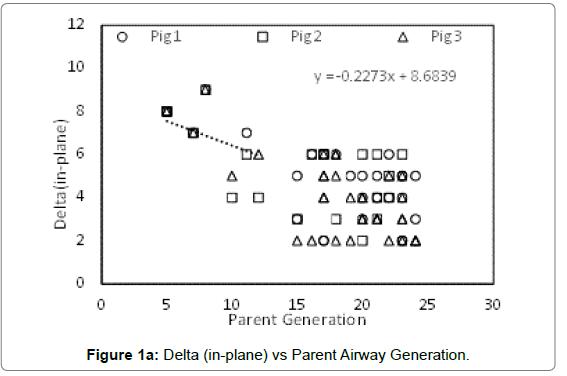 bioengineering-biomedical-science-Delta-Parent-Airway-Generation