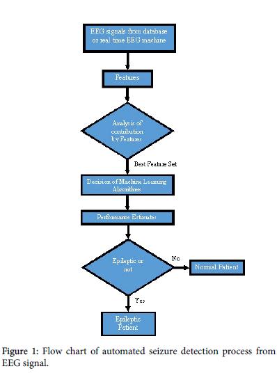 bioengineering-biomedical-science-Flow-chart-seizure