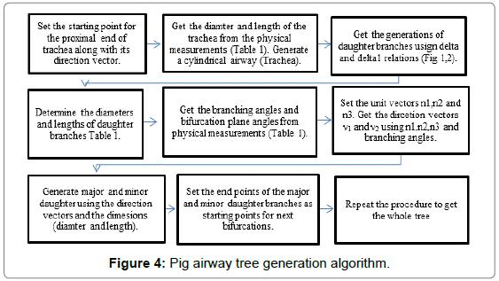 bioengineering-biomedical-science-Pig-airway-tree-generation