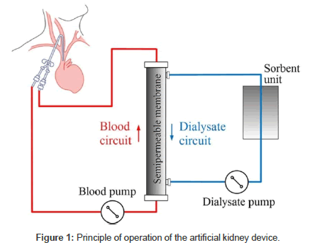 A novel blood pump design and characterization omics international bioengineering biomedical science principle operation ccuart Image collections