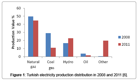 privatization of the turkish electricity distribution The newly privatised distribution companies that affect the entry of independent  retail electricity companies to the market are the main problems that the turkish.