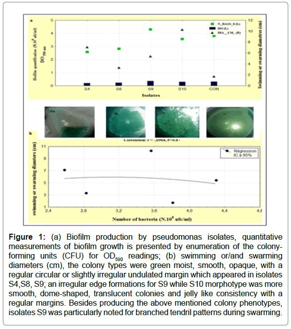 bioengineering-biomedical-science-biofilm-quantitative-enumeration
