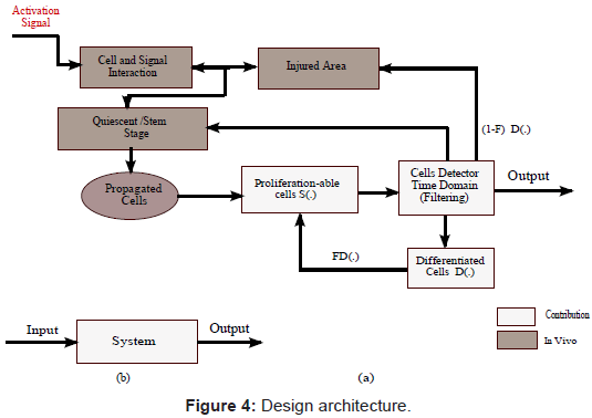 bioengineering-biomedical-science-design-architecture