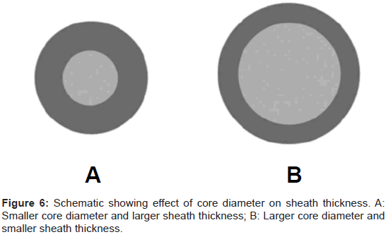 bioengineering-biomedical-science-diameter-sheath-thickness