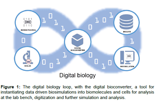 bioengineering-biomedical-science-digital-biology-bioconverter