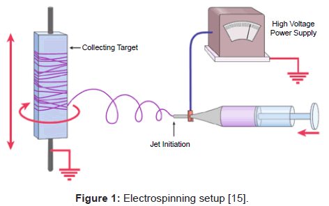 bioengineering-biomedical-science-electrospinning-setup