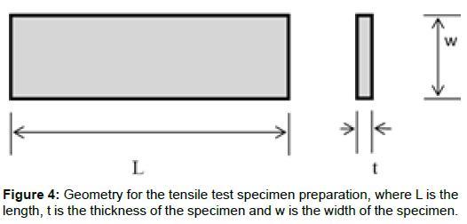 bioengineering-biomedical-science-geometry-tensile-specimen