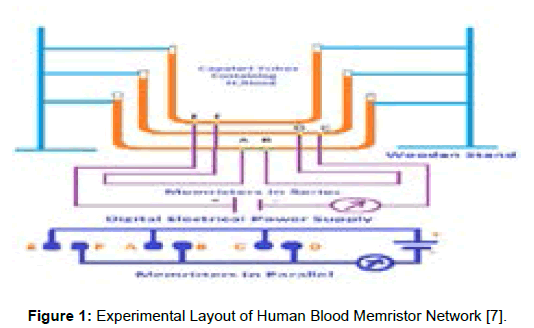 bioengineering-biomedical-science-human-blood-memristor