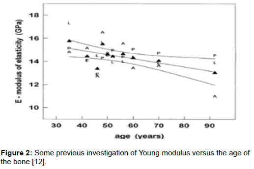 effect of age on the elastic modulus of bone | open access journals, Skeleton