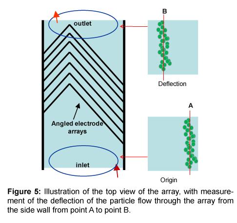 bioengineering-biomedical-science-measurement-deflection-particle