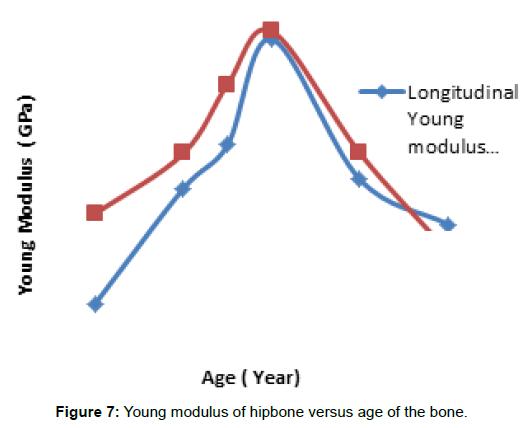 bioengineering-biomedical-science-modulus-hipbone-bone