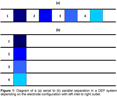 bioengineering-biomedical-science-serial-parallel-separation