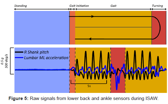 bioengineering-biomedical-science-signals-lower-sensors
