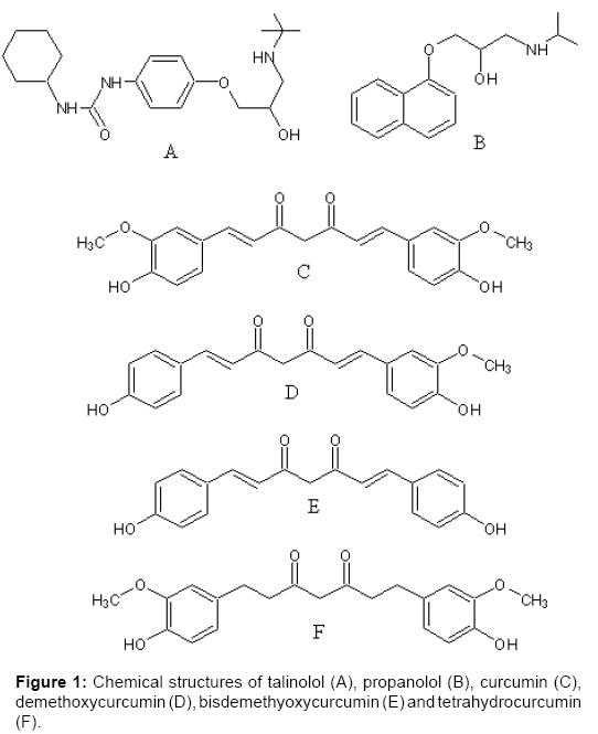 bioequivalence-bioavailability-bisdemethyoxycurcumin