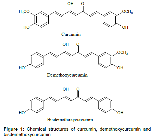 bioequivalence-bioavailability-curcumin-demethoxycurcumin-bisdemethoxycurcumin