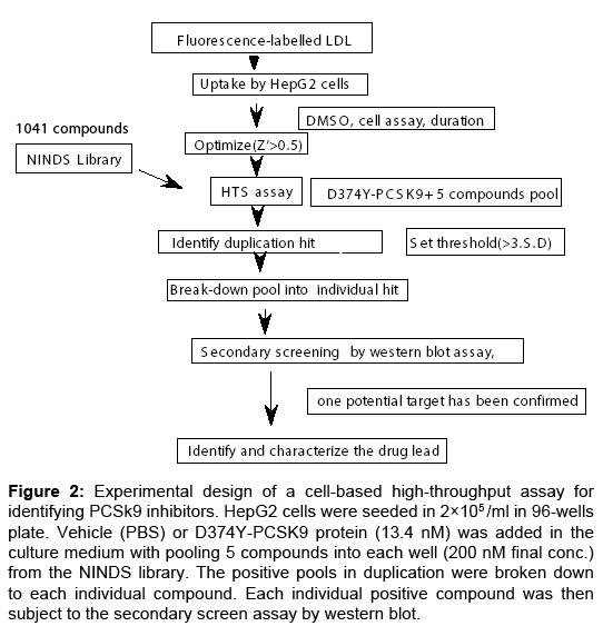 bioequivalence-bioavailability-experimental