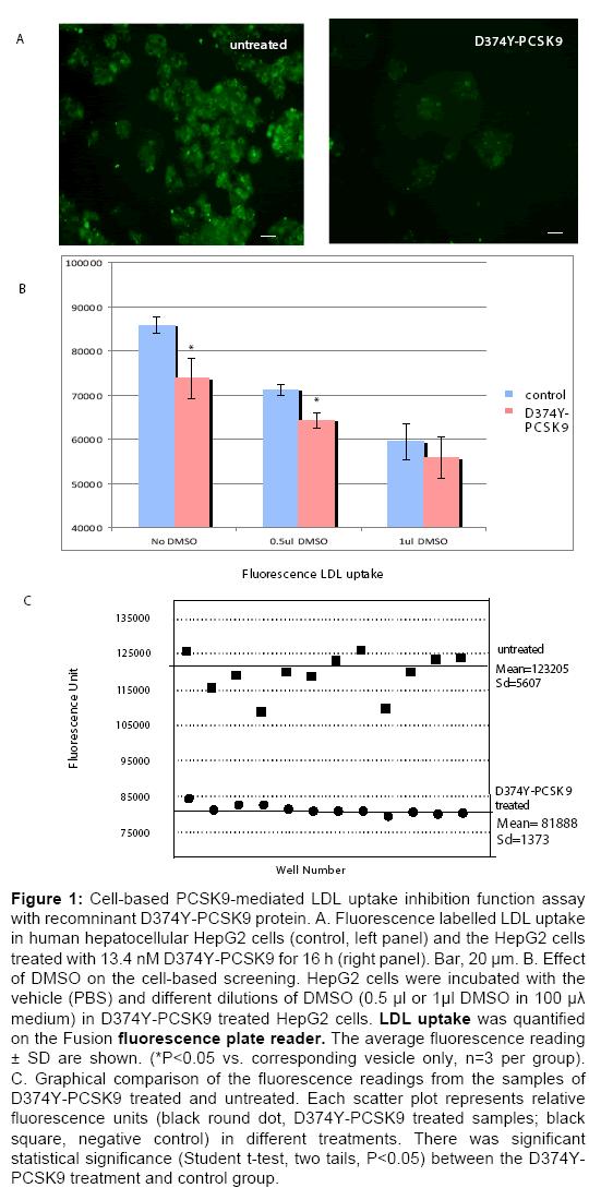 bioequivalence-bioavailability-fluorescence