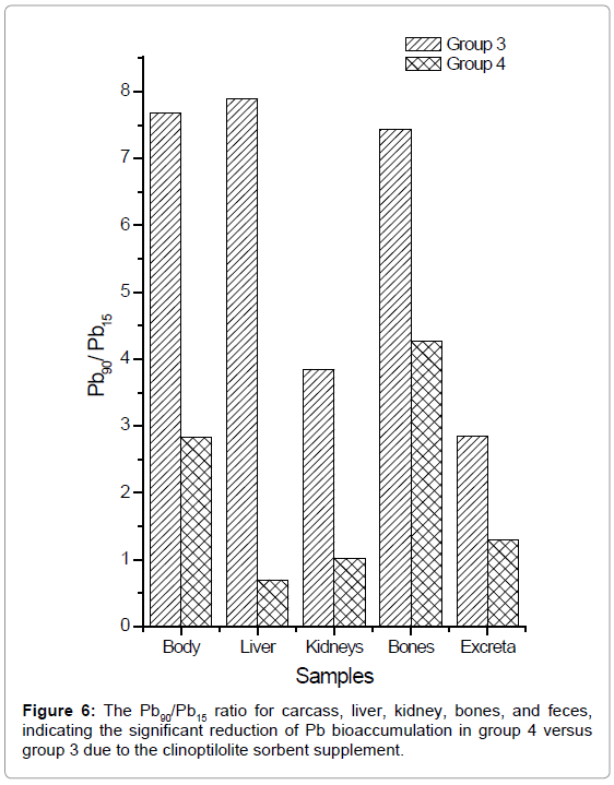 bioequivalence-bioavailability-ratio-carcass