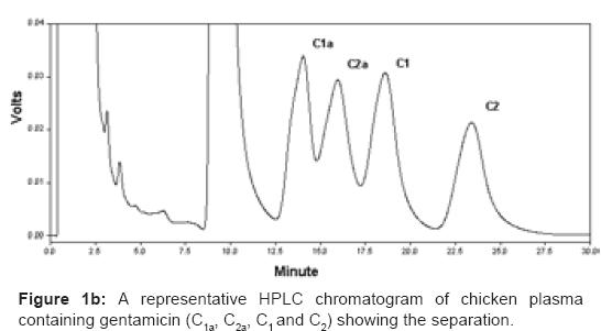 bioequivalence-bioavailability-representative