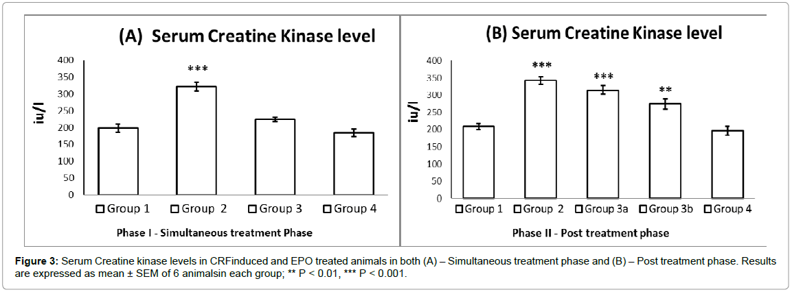 bioequivalence-bioavailability-serum-creatinine