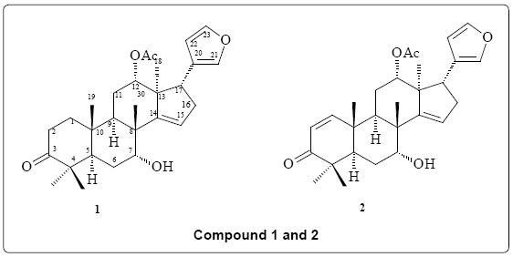 biofertilizers-biopesticides