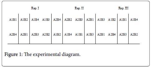 biofertilizers-biopesticides-experimental-diagram