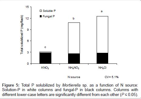 biofertilizers-biopesticides-fungal-black-columns