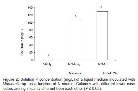 biofertilizers-biopesticides-lower-case-letters