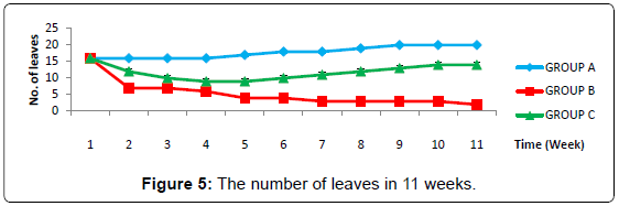 biofertilizers-biopesticides-number-leaves-weeks