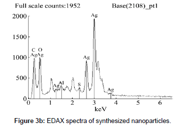 biofertilizers-biopesticides-spectra-synthesized
