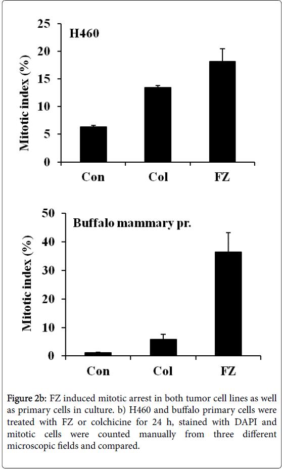 biological-systems-FZ-induced-H460-buffalo
