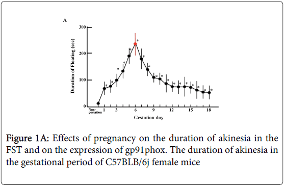 biology-and-medicine-Effects-pregnancy