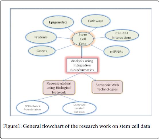 biology-and-medicine-General-flowchart