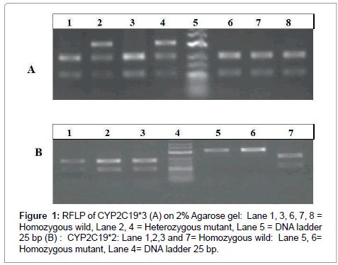 biology-and-medicine-Heterozygous-mutant