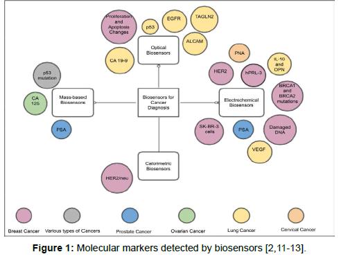 biology-and-medicine-Molecular-markers