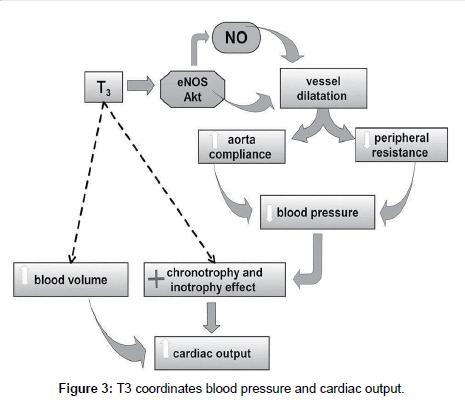 biology-and-medicine-coordinates-blood