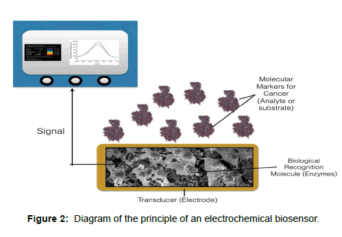 biology-and-medicine-electrochemical-biosensor
