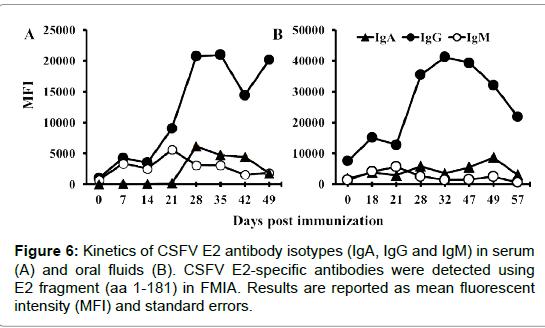 biology-medicine-antibody-isotypes