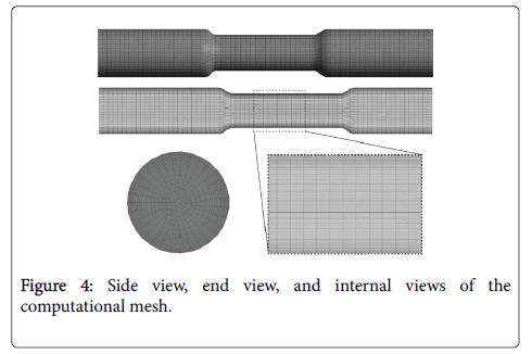 biology-medicine-internalviews-computational-mesh