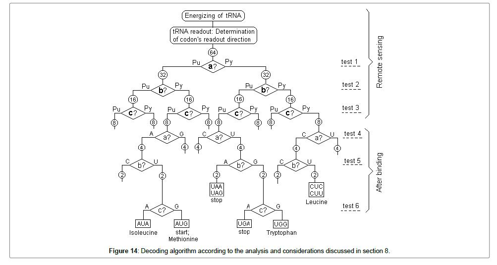 biometrics-biostatistics-algorithm