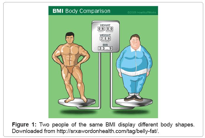 biometrics-biostatistics-different-body-shapes