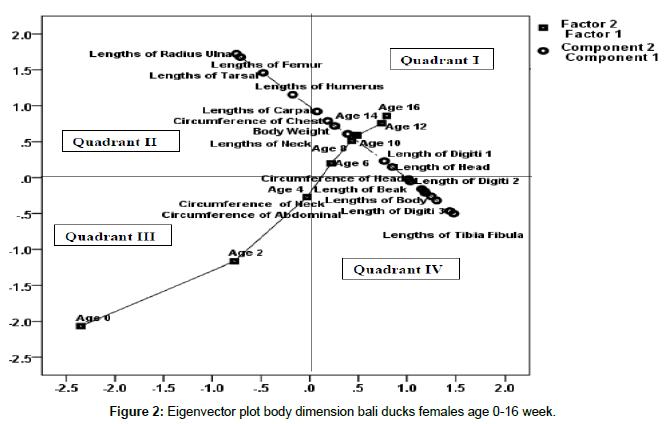 biometrics-biostatistics-eigenvector-plot-body
